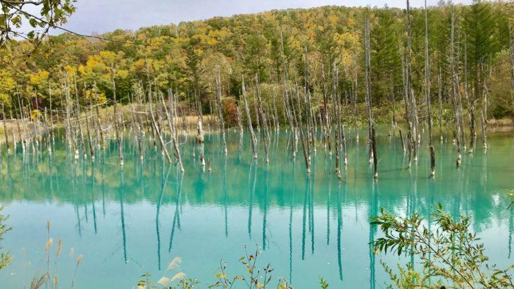 北海道はライダーみんな仲良し!美瑛町の青い池と四季彩の丘〜日本一周 原付バイク旅 22日目〜
